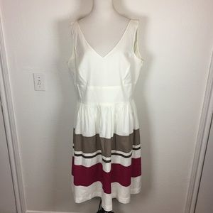 NWT Ann Taylor Cotton V Neck Dress